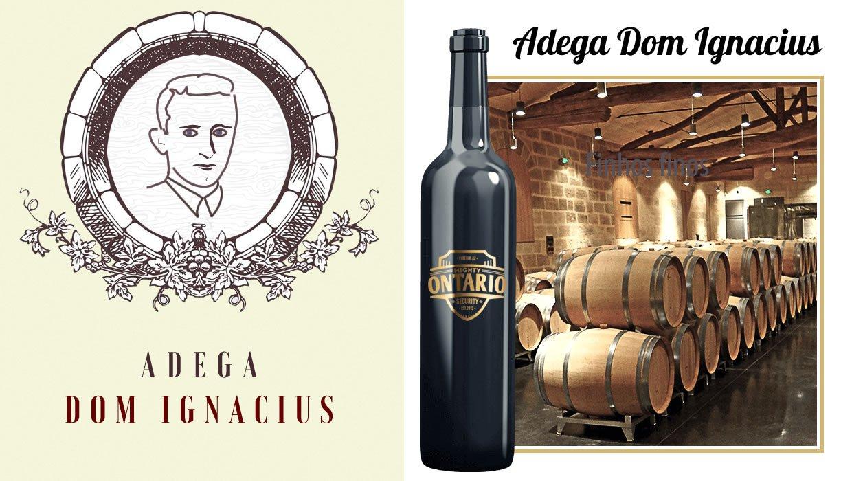 adega - Adega Dom Ignacius